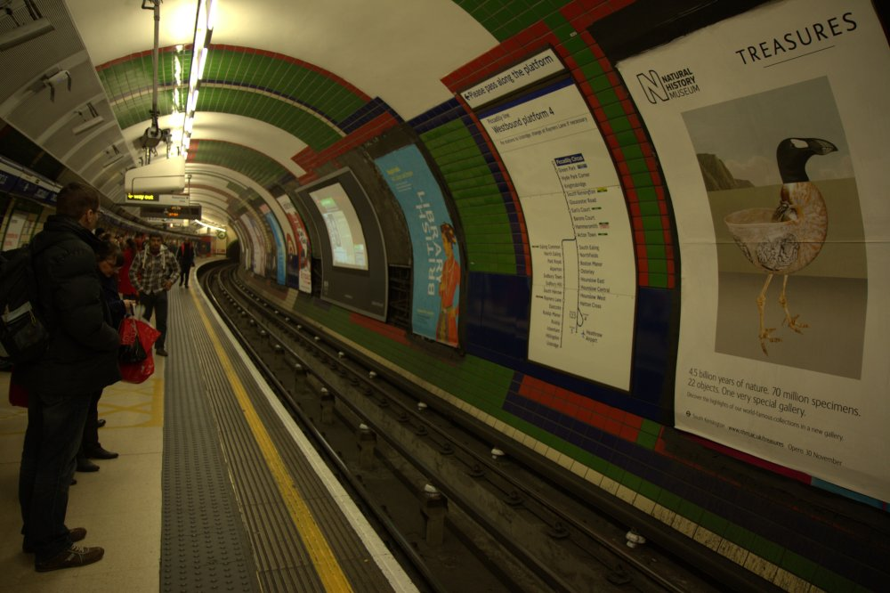Londra - decembrie 2012 (3/6)