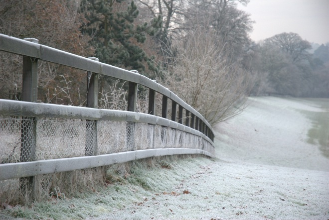 Coworth Park december © Elvis Dobrescu (17)