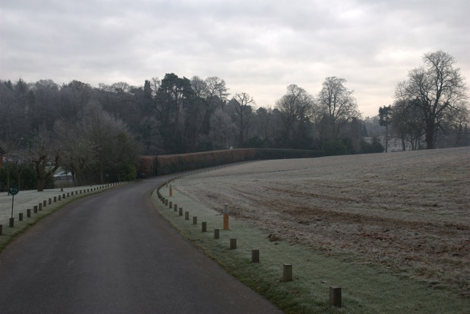 Coworth Park december © Elvis Dobrescu (2)