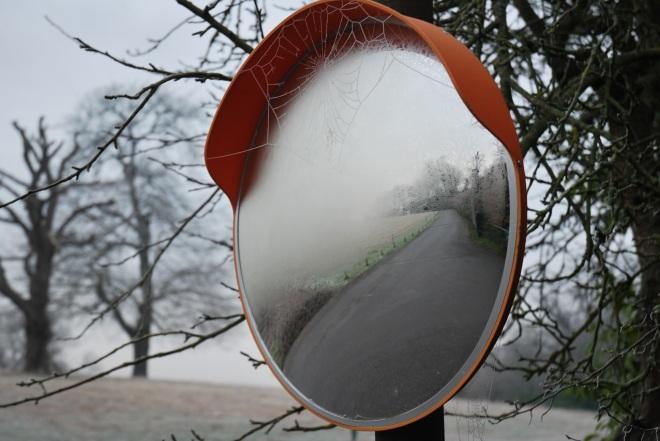 Coworth Park december © Elvis Dobrescu (24)