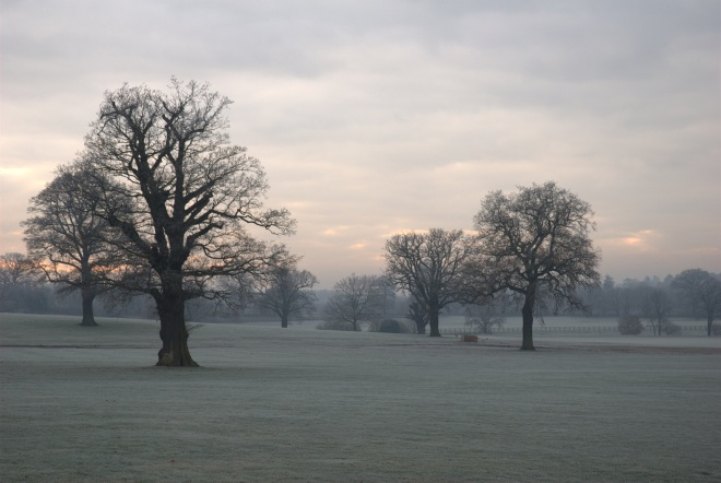 Coworth Park december © Elvis Dobrescu (3)