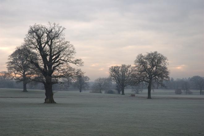 Coworth Park december © Elvis Dobrescu (3)