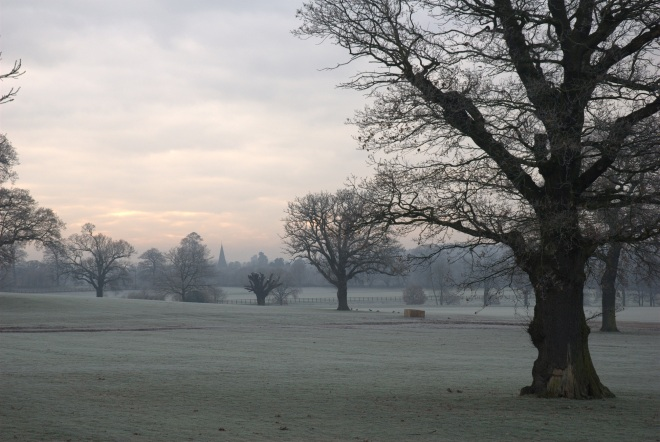 Coworth Park december © Elvis Dobrescu (4)
