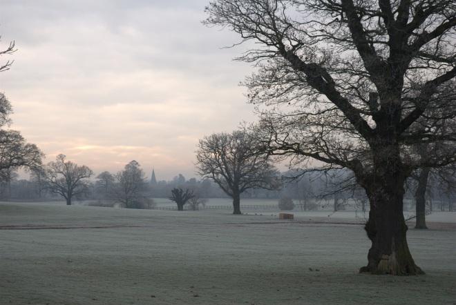 Coworth Park december © Elvis Dobrescu (4)