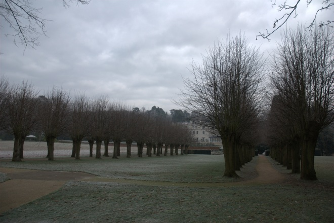 Coworth Park december © Elvis Dobrescu (6)