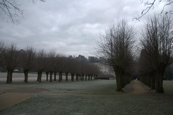 Coworth Park december © Elvis Dobrescu (6)