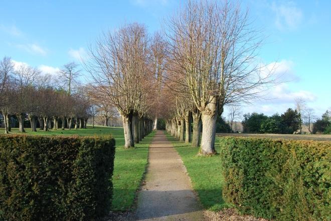Coworth Park garden © Elvis Dobrescu (1)