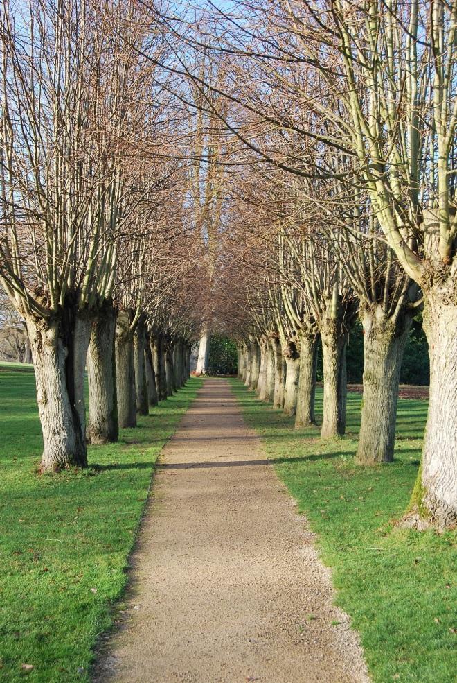 Coworth Park garden © Elvis Dobrescu (2)