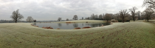 Coworth Park panorama © Elvis Dobrescu (1)