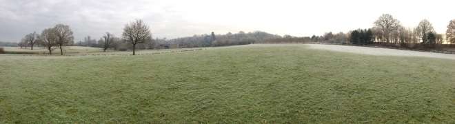 Coworth Park panorama © Elvis Dobrescu (2)