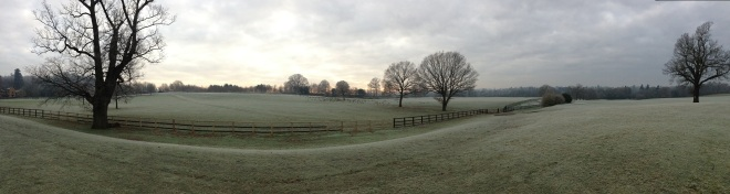 Coworth Park panorama © Elvis Dobrescu (5)